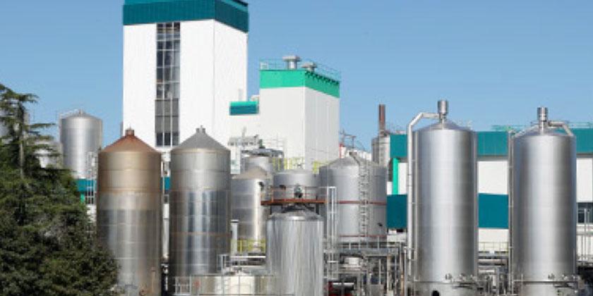 26-hautapu-dairy-factory