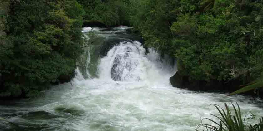38-kaituna-river